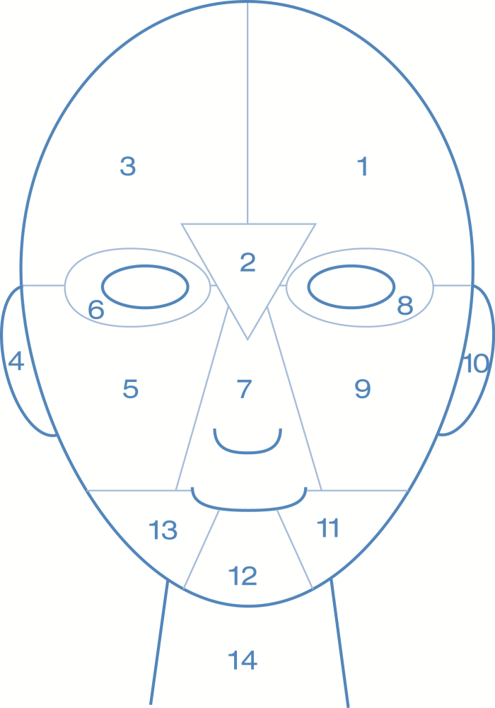Face-Mapping-Grid